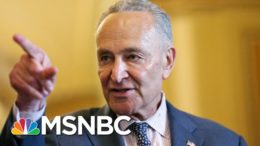 Sen. Schumer To GOP Colleagues: Where Are You? | Morning Joe | MSNBC 8