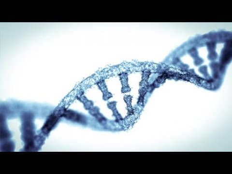 What role will  genetic genealogy play in solving cold cases? 1
