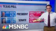 Texan Political Shifts In The Trump Era | Ayman Mohyeldin | MSNBC 3