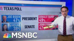 Texan Political Shifts In The Trump Era | Ayman Mohyeldin | MSNBC 9