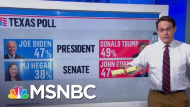 Texan Political Shifts In The Trump Era | Ayman Mohyeldin | MSNBC 6