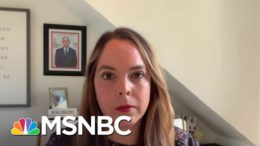 Fmr. COVID Task Force Member Olivia Troye Says You're Now Watching The President 'Scramble' | MSNBC 6