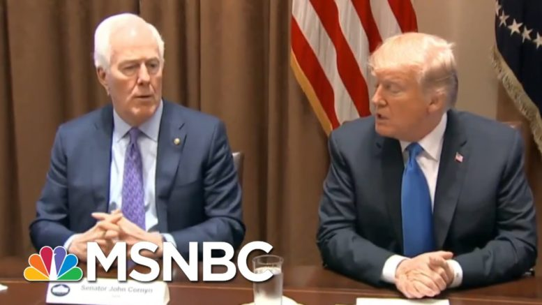 'Complicit': Heitkamp On Sen. Cornyn, Republicans Jumping Ship As Trump Polls Sink | All In | MSNBC 1