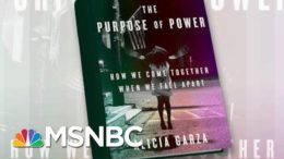 BLM Co-Founder Releases Book 'The Purpose Of Power' | Morning Joe | MSNBC 6