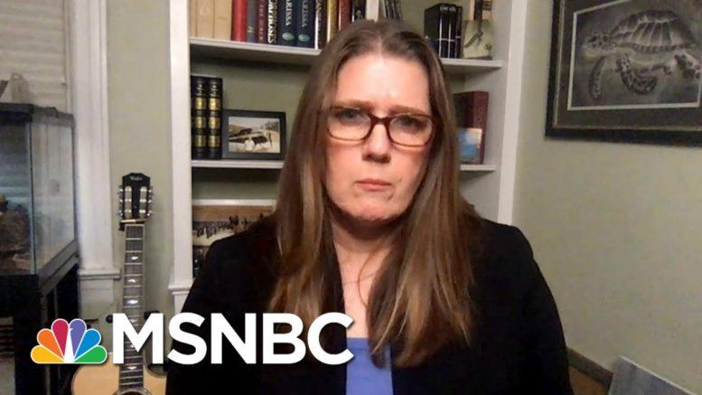 As Trump Plummets, Niece Mary Trump Tells Media To Stop Pretending He's 'Normal' | MSNBC 1