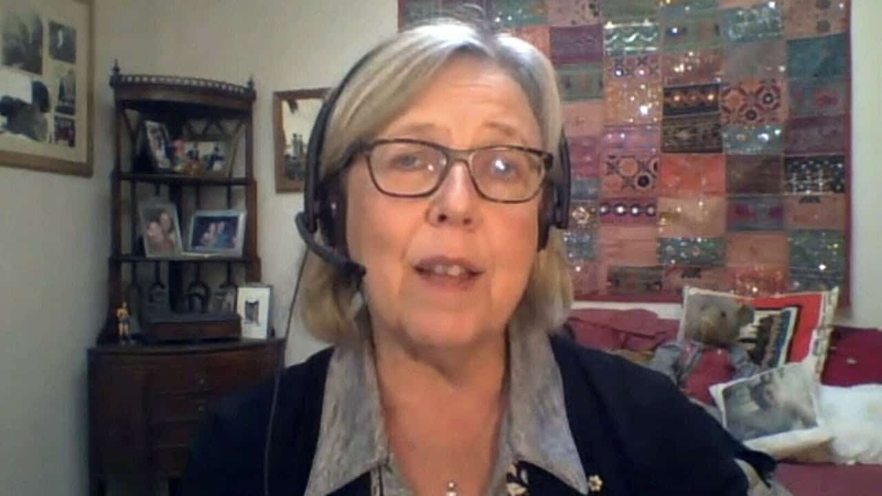 """""""We're in a global pandemic"""": Elizabeth May on why Greens sided with Liberals in confidence vote 1"""