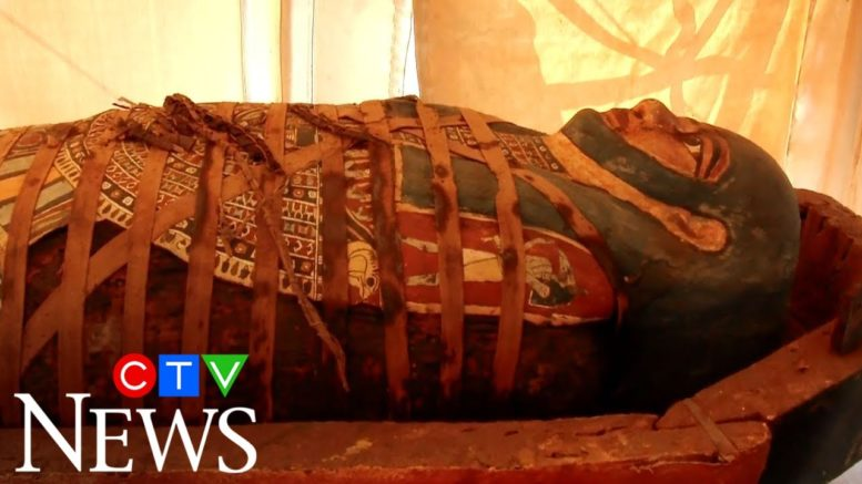 Egypt has discovered dozens more ancient coffins in the necropolis of Saqqara 1