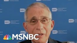 Fauci: Covid-19 Task Force Meetings 'Averaging One A Week' | MTP Daily | MSNBC 2