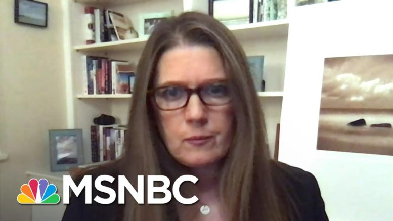 Mary Trump On Her Donald Trump's Lack Of Empathy: 'He Doesn't Care'   The Last Word   MSNBC 1