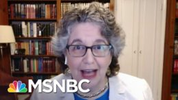 FEC Commissioner: America's Election System Is Still 'In The Horse and Buggy Age' | MSNBC 7