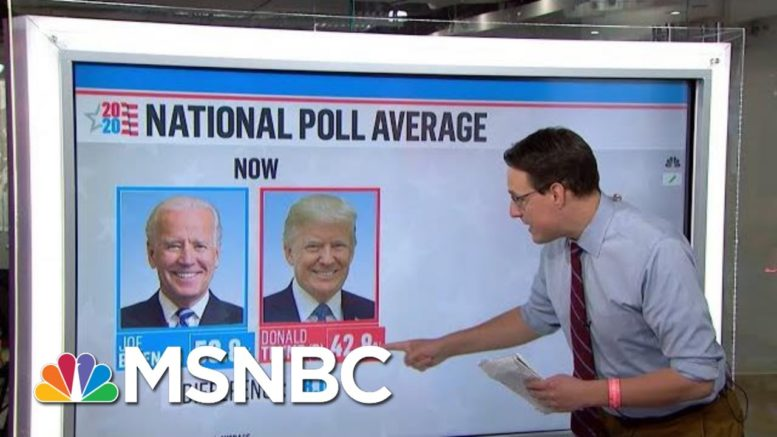 Trump 'Playing Defense' In Multiple States When It Comes To Electoral College | MTP Daily | MSNBC 1