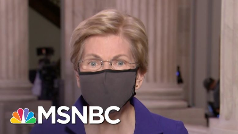 Elizabeth Warren: Trump 'Doesn't Seem To Care' About Those Impacted By The Pandemic | The ReidOut 1