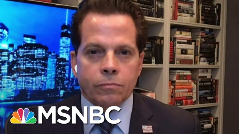 Scaramucci: 'I Applaud The President For Unifying The Country. It Just Happens To Be Against Him' 1
