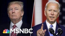 Ted Cruz: Trump's Hunter Biden Attacks Won't Win Him Votes | The 11th Hour | MSNBC 1