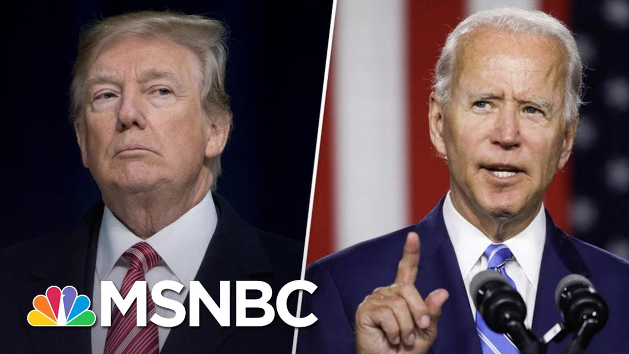 Ted Cruz: Trump's Hunter Biden Attacks Won't Win Him Votes   The 11th Hour   MSNBC 1