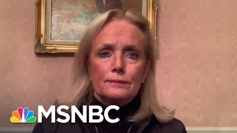 Rep. Dingell On Democrats' Chances To Win Back Michigan | The Last Word | MSNBC 1
