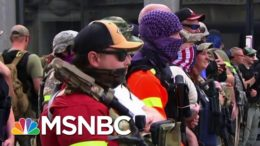 Armed U.S. 'Militia' Groups Increase Their Visibility | Morning Joe | MSNBC 3