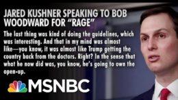 Jared Kushner Said Trump Took Back U.S. From Doctors | Morning Joe | MSNBC 2