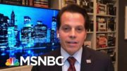 Scaramucci: Trump Is Trying To Find 'One Hail Mary Strike On The Map' | MTP Daily | MSNBC 4