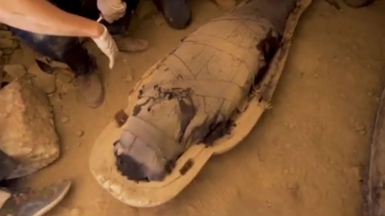 At least 59 centuries-old coffins, some with mummies inside, unearthed in Egypt. 1