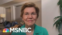 Sen. Warren: 'It's Time For A Wealth Tax In America' | The Last Word | MSNBC 5