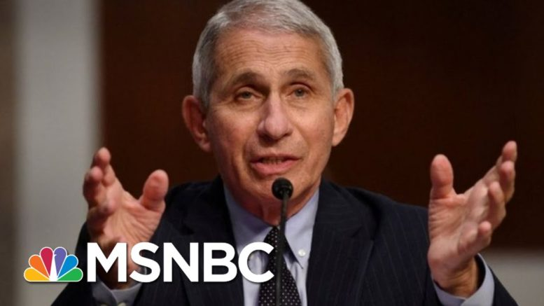 Fauci: Covid 'Numbers Speak For Themselves' | MTP Daily | MSNBC 1