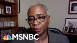 Renee Graham: Biden Understands That 'Democracy Remains Unfulfilled For Black Americans' | MSNBC 7