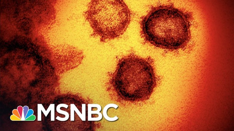 ER Doc Describes The Horrific Reality Of Dying From Covid-19 | The 11th Hour | MSNBC 1