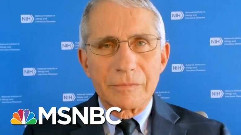 Dr. Fauci: Trump 'Looks Good' But A 'Reversal' Is Possible With COVID-19 | Andrea Mitchell | MSNBC 1