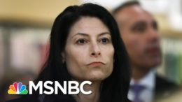 Alleged Domestic Terrorists Used Armed Protests At Michigan Capitol For Recruitment | MSNBC 8