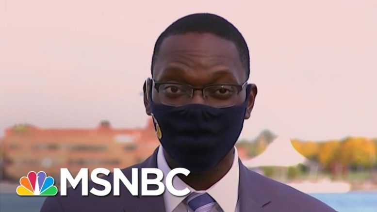 Michigan Lt. Gov. On Domestic Terrorism: 'Democracy Can Defeat These Destructive People'  | MSNBC 1