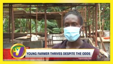 Young Farmer Thrives Despite the Odds - October 12 2020 6