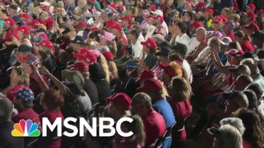 Trump Admin Admits Embrace Of Disputed Herd Immunity Strategy: WaPo | Rachel Maddow | MSNBC 6
