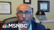 Michael Steele: 'Remember The Elected Officials Who Made You Stand In That Line' | Deadline | MSNBC 2