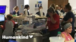 Nurses protect 19 babies as hurricane rages outside | Humankind 1