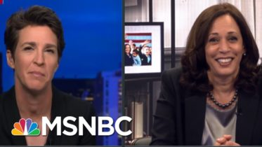 Could You See The Fly? | Rachel Maddow | MSNBC 6