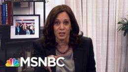 Harris: 'When We Take Back The Senate And Win The Majority, We Will Have A Lot To Do.' | MSNBC 8