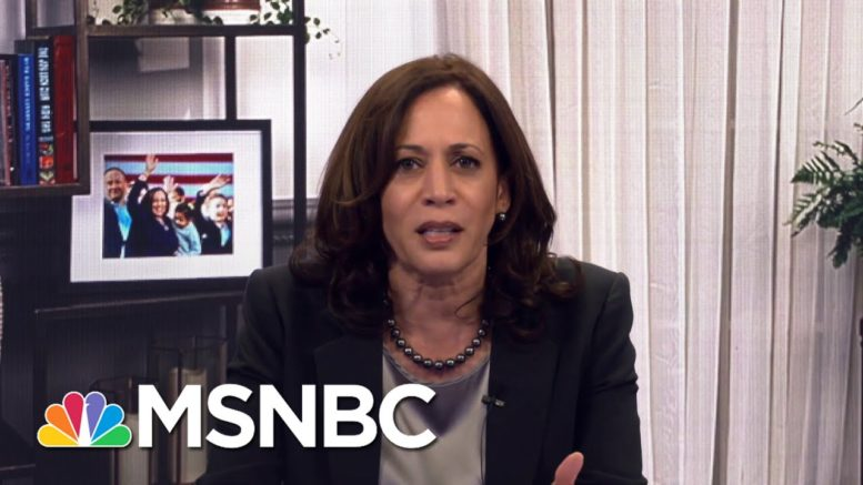 The American People Didn't Need To Suffer: Harris Slams Trump For 'No Plan' On Coronavirus   MSNBC 1