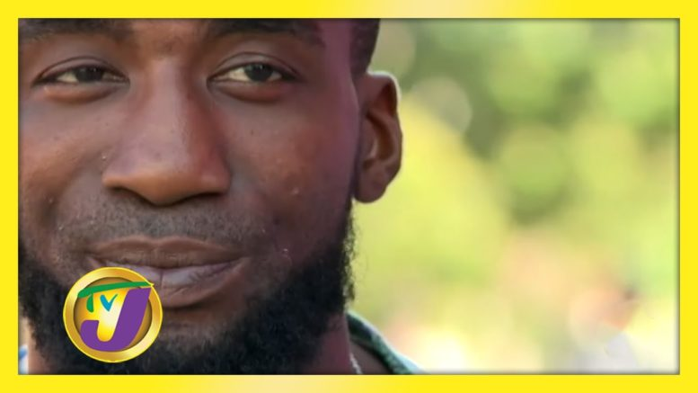 Jamaica Diss Culture: TVJ All Angles - October 14 2020 1