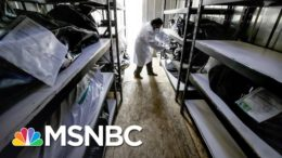 'Not Only Lies, They Were Dangerous Lies': Maddow Lists Trump Covid Lies At Town Hall | MSNBC 5