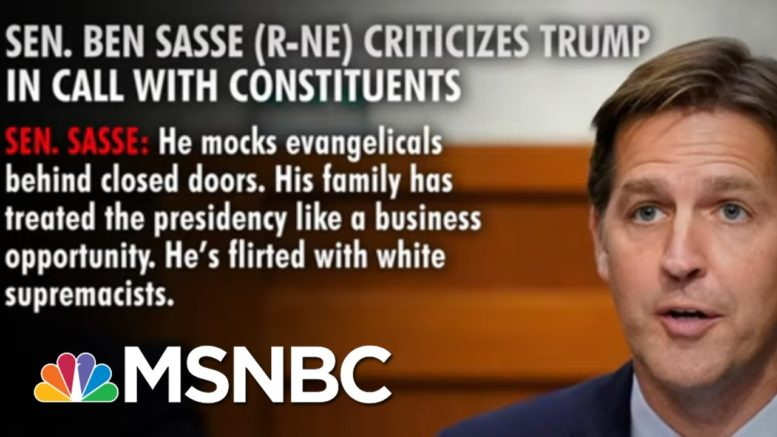 Sen. Sasse Criticizes Trump During Call With Constituents | Way Too Early | MSNBC 1