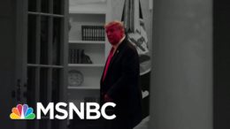 No Public Sign Trump's Ready To Concede | The 11th Hour | MSNBC 3