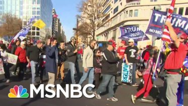 Thousands of Trump Supporters March In Protest Of Election Results   MSNBC 6