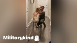 Giddy Golden Retriever leaps into dad's arms | Militarykind 3