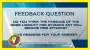 TVJ News: Feedback Question - November 17 2020 2