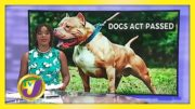 Dogs Act Passed - November 17 2020 4