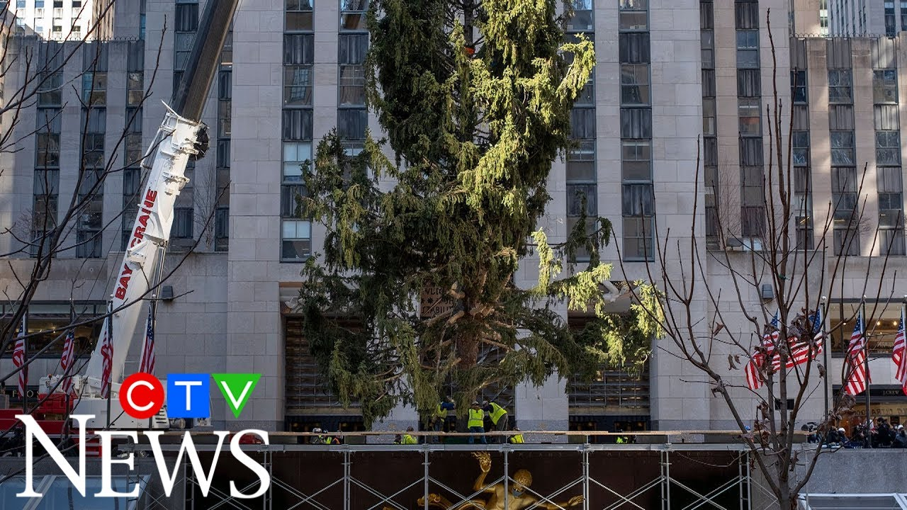 The Christmas Tree at 30 Rock isn't looking as full as years past 5