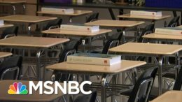 Redlener: Wrong To Close Schools But Not Bars Over Covid-19 Surge | The 11th Hour | MSNBC 2
