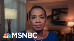 Donna Edwards Says Trump Is 'Operating Unlawfully & Dangerously & It's Killing Americans' | Deadline 7