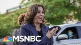 Yamiche Alcindor: Kamala Harris Has 'Solidified Her Place In History' | The Last Word | MSNBC 7